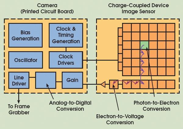 Perbedaan Antara Sensor Gambar CCD dan CMOS di Kamera Digital 6 sensor
